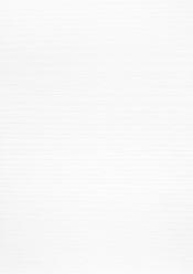 CPL gebürstet Eiche Polarweiss