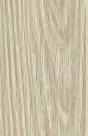 Pinie-Cream-Detail59cfd642b3bbd